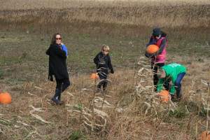 pickers in the pumpkin patch
